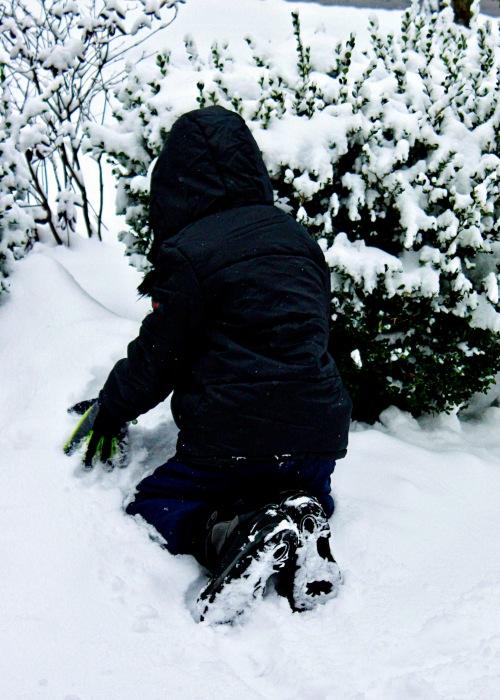 M snow 2