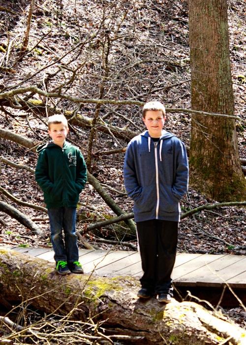 boys log ash cave