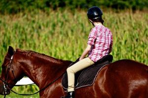 O ride 3