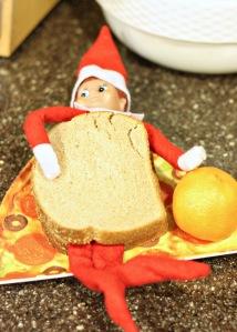 sandwich buddy 1