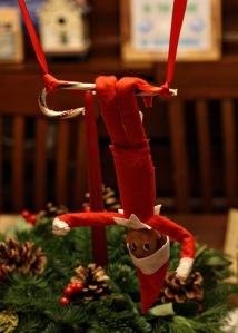trapeze buddy